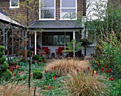 LISETTE PLEASANCE GARDEN  LONDON: VIEW TO THE HOUSE WITH GRAVEL  STIPA ARUNDINACEA AND TULIPS WESTPOINT AND QUEEN OF SHEBA