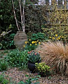 LISETTE PLEASANCE GARDEN  LONDON: GRAVEL  GARDEN WITH TERRACOTTA CONTAINER  NARCISSUS AND STIPA ARUNDINACEA