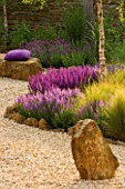 RICKYARD BARN GARDEN  NORTHAMPTONSHIRE: THE GRAVEL GARDEN WITH ROCK SCULPTURE AND SEAT  PURPLE CUSHION  SALVIA WESUWE AND LAVENDULA PAPILLON