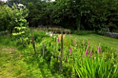 DESIGNER CLARE MATTHEWS: MEADOW WITH DIFTWOOD SCULPTURE  FOXGLOVES AND GIANT HOGWEED