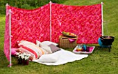 DESIGNER CLARE MATTHEWS: WIND BREAK SCREEN PROJECT - WIND BREAK IN LAWN WITH CUSHIONS  BARBEQUE AND TRAY WITH DRINKS