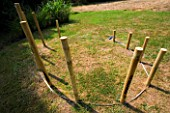 DESIGNER: CLARE MATTHEWS - POST TEPEE PROJECT: POSTS IN PLACE AROUND TAPE MEASURE