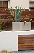 MINIMALIST GARDEN DESIGNED BY WYNNIATT-HUSEY CLARKE: METAL CONTAINER PLANTED WITH AGAVE AMERICANA