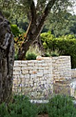 CURVED DRY STONE WALLING TOPPED WITH LAVANDULA RETAINS OLIVE TREE TERRACE IN GINA PRICES CORFU GARDEN.