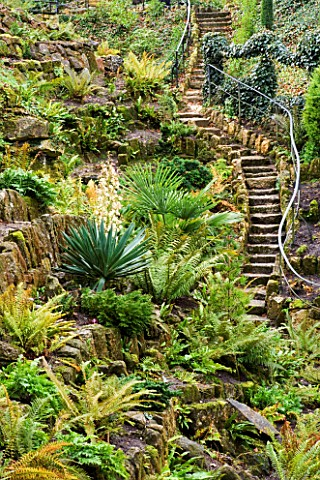 BRODSWORTH_HALL__YORKSHIRE_ENGLISH_HERITAGE_THE_VICTORIAN_FERNERY