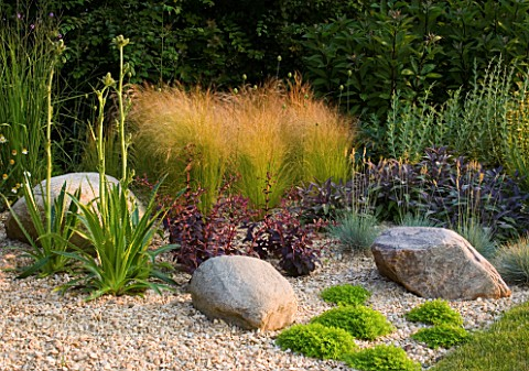 RICHARD_JACKSONS_GARDEN_DESIGNED_BY_CLARE_MATTHEWS__GRAVEL_BORDER_WITH_ROCKS__ERYNGIUM_AGAVIFOLIUM__