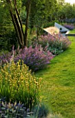 RICHARD JACKSONS GARDEN: EVENING LIGHT ON LAWN AND BORDER PLANTED WITH NEPETA WALKERS LOW  SISYRINCHIUM STRIATUM. WATER RILL AND METAL SAILS. DESIGNER: CLARE MATTHEWS