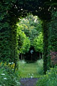VEDDW HOUSE GARDEN  GWENT  WALES. THE MEADOW  - VIEW THROUGH HORNBEAM TUNNEL TO AVENUE OF CLIPPED CORYLUS COLURNA TO DOVE CUT OUT