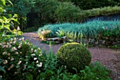 VEDDW HOUSE GARDEN  GWENT  WALES: DESIGNERS ANNE WAREHAM AND CHARLES HAWES - MASSED PLANTING OF LEYMUS ARENARIUS BESIDE A PATH