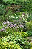HUNMANBY GRANGE  YORKSHIRE: HERBACEOUS BORDER WITH VARIEGATED LEMON BALM (MELISSA)  CHIVES (ALLIUM SCHOENOPRASUM)  PAEONIA MLOKOSEWITSCHII OR MOLLY THE WITCH