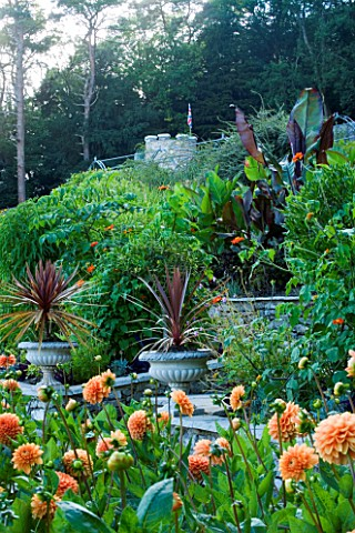 YEWBARROW_HOUSE_GARDENS__CUMBRIA__THE_ITALIAN_TERRACE_WITH_DAHLIA_SYLVIA__PHORMIUMS_IN_CONTAINERS_AN