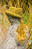 WOODPECKERS  WARWICKSHIRE  WINTER: STATUE WITH LICHEN IN FRONT OF SALIX ALBA HUTCHINSONS YELLOW