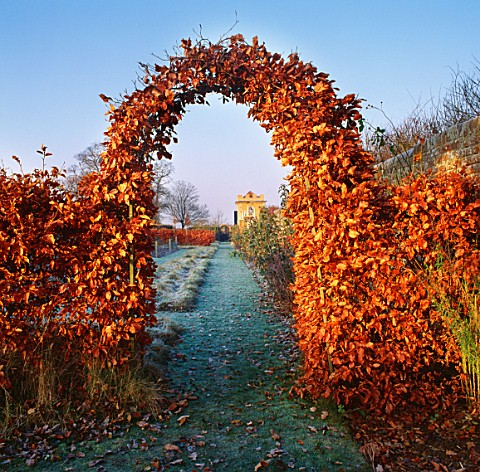 A_COPPER_BEECH__ARCHWAY_WITH_THE_PAVILION_VISIBLE_IN_THE_BG_DAVID_HICKS_GARDEN__OXFORDSHIRE