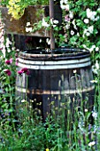 CHELSEA FLOWER SHOW 2007 - THE FETZER SUSTAINABLE WINERY GARDEN. TRADITIONAL HALF BARREL WATER BUTT FOR COLLECTING RAINWATER. RECYCLING  RECYCLED