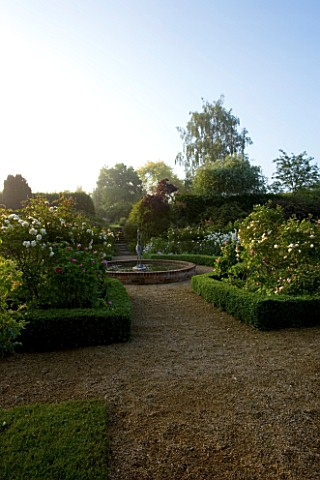 MARINERS_GARDEN__BERKSHIRE_DESIGNER_FENJA_ANDERSON__THE_ROSE_GARDEN_AT_DAWN__ROSE_PROSPERITY__ROSE_C