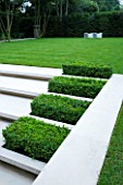 CONTEMPORARY GARDEN DESIGNED BY CHARLOTTE SANDERSON: BOX RECTANGLES SET INTO STEPS WITH LAWN AND WAVE SEAT BEHIND