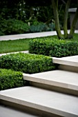 CONTEMPORARY TOWN/URBAN GARDEN DESIGNED BY CHARLOTTE SANDERSON: BOX RECTANGLES SET INTO LIMESTONE STEPS