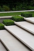 CONTEMPORARY TOWN/URBAN GARDEN DESIGNED BY CHARLOTTE SANDERSON: LIMESTONE STEPS WITH BOX RECTANGLES