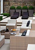 CONTEMPORARY TOWN/CITY/URBAN GARDEN DESIGNED BY CHARLOTTE SANDERSON: ENTERTAINING/RELAXING/DINING AREA WITH TABLE AND CHAIRS/SOFAS AND CHIC METAL PLANTERS WITH BOX