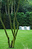 URBAN CONTEMPORARY MODERN MINIMALIST GARDEN DESIGNED BY CHARLOTTE SANDERSON: VIEW ACROSS LAWN TO MEATL WAVE SEAT. A PLACE TO SIT