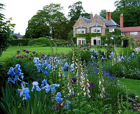 THE_OLD_RECTORY__HASELBECH__NORTHAMPTONSHIRE__THE_OLD_RECTORY_BEHIND_WITH_BORDER_OF_IRIS_JANE_PHILLI