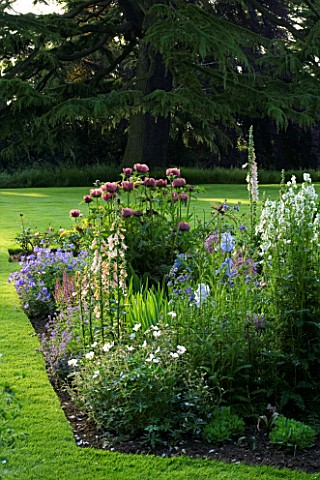 THE_OLD_RECTORY__HASELBECH__NORTHAMPTONSHIRE__LAWN_AND_HERBACEOUS_BORDER_PLANTED_WITH_IRIS_JANE_PHIL
