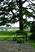 THE OLD RECTORY  HASELBECH  NORTHAMPTONSHIRE - PATIO AREA AND LAWN WITH CEDAR OF LEBANON AND WOODEN BENCH