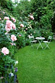 AMELIA HEATH GARDEN  1  CROSS VILLAS  SHROPSHIRE: THE SECRET GARDEN WITH LAWN  WOODEN TABLE AND CHAIRS AND ROSE NATALIE