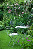 AMELIA HEATH GARDEN  1  CROSS VILLAS  SHROPSHIRE: THE SECRET GARDEN. A PLACE TO SIT - WOODEN TABLE AND CHAIRS ON LAWN SURROUNDED BY ROSES