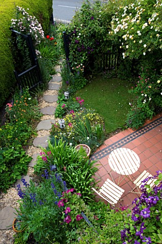 AMELIA_HEATHS_GARDEN__SHROPSHIRE_SIDE_GARDEN_WITH_ROSA_GOLDFINCH_OVER_PATIO__ROSA_OPEN_ARMS_BY_GATE_