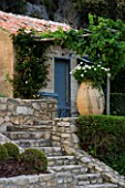DESIGNER DOMINIQUE LAFOURCADE  PROVENCE  FRANCE - PROVENCAL FARMHOUSE - OUTBUILDING WITH VINE PERGOLA  STONE STEPS  BOX BALLS AND TERRACOTTA CONTAINER WITH WHITE GERANIUMS