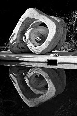 PROVENCE__FRANCE_GARDEN_OF_MARCO_NUCERA_BLACK_AND_WHITE_IMAGE__BEAUTIFUL_WOODEN_SCULPTURE_REFLECTED_