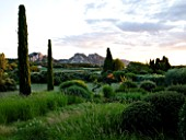 DESIGNER ALAIN DAVID IDOUX - MAS BENOIT  PROVENCE  FRANCE. VIEW TO MOUNTAINS WITH GRASSES AND CLIPPED CYPRESS TREES IN THE FOREGROUND. EVENING LIGHT