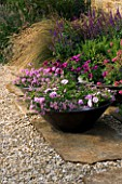 RICKYARD BARN GARDEN  NORTHAMPTONSHIRE: STONE SLABS ON THE PATIO WITH GRAVEL  BRONZE CONTAINERS PLANTED WITH PETUNIA ANGELA AND TAPIEN VERBENA VAR SUNVER