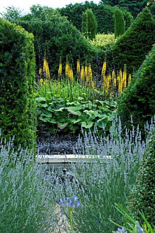 THROUGHAM_COURT__GLOUCESTERSHIRE_DESIGNER_CHRISTINE_FACER_VIEW_INTO_THE_SOLAR_POOL_WITH_LIGULARIA_TH