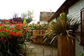 DARREN CLEMENTS GARDEN  STAFFORDSHIRE: COURTYARD WITH HOT TUB AND CROCOSMIA LUCIFER