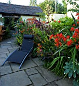 DARREN CLEMENTS GARDEN  STAFFORDSHIRE: COURTYARD GARDEN WITH BLACK SUN LOUNGER BESIDE BORDER WITH CROCOSMIA LUCIFER AND COTINUS GRACE