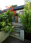 DARREN CLEMENTS GARDEN  STAFFORDSHIRE. STEPS  WITH BAMBOO  FATSIA JAPONICA AND CROCOSMIA LUCIFER
