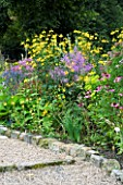 JUNE BLAKES NURSERY  CO WICKLOW  IRELAND: DESIGNER JUNE BLAKE - BORDER WITH ECHINACEA PURPUREA AND RUDBECKIA HERBSTONNE EDGED WITH STONE