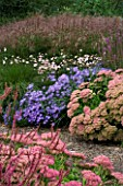 LADY FARM  SOMERSET: DESIGNER  JUDY PEARCE - NEW PERENNIAL BORDER WITH SEDUM AUTUMN JOY  ASTER FRIKARTII MONCH  ANEMONE TOMENTOSA ROBUSTISSIMA  LYTHRUM FIRE CANDLE