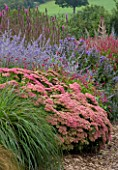 LADY FARM  SOMERSET: DESIGNER  JUDY PEARCE - NEW PERENNIAL BORDER WITH SEDUM AUTUMN JOY  PERSICARIA INVERLEITH  PEROVSKIA BLUE SPIRE  ASTER PERCY THROWER  LYTHRUM FIRE CANDLE