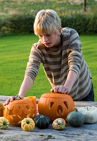 HALLOWEEN_BOY_AGED_13_ADMIRES_A_STILL_LIFE_ON_OUTDOOR_WOODEN_TABLE_WITH_PUMPKINS__SQUASHES_AND_GOUR