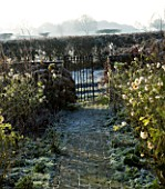 BOONSHILL FARM AT CHRISTMAS: VIEW THROUGH THE  FRONT DOOR ALONG THE PATH OF THE FRONT GARDEN IN FROST. DESIGNER: LISETTE PLEASANCE