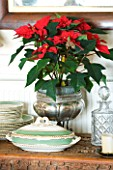 BOONSHILL FARM AT CHRISTMAS: POINSETTIA IN A SILVER CONTAINER ON SIDEBOARD. DESIGNER: LISETTE PLEASANCE