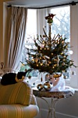 BOONSHILL FARM AT CHRISTMAS: LIVING ROOM WITH CHRISTMAS TREE BESIDE THE FRONT WINDOW AND CAT SLEEPING ON THE SETTEE. DESIGNER: LISETTE PLEASANCE