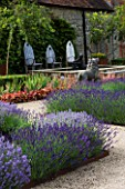 COWDRAY WALLED GARDEN  SUSSEX. DESIGNER: JAN HOWARD. BEDS OF LAVENDER HIDCOTE (LAVANDULA) WITH WOODEN THRONE CHAIRS AND LION STATUE