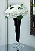 TANIA LAURIE  LONDON. DETAIL OF BLACK STEMMED GLASS VASE WITH SINGLE WHITE HYDRANGEA BLOOM