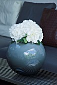 TANIA LAURIE  LONDON. DETAIL OF WHITE HYDRANGEA BLOOM IN SPHERICAL BLUE VASE. CONTEMPORARY  MODERN
