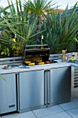 CONTEMPORARY FORMAL ROOF TERRACE/ GARDEN DESIGNED BY DATA NATURE ASSOCIATES: BARBEQUE