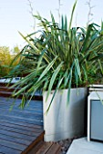 CONTEMPORARY FORMAL ROOF TERRACE/ GARDEN DESIGNED BY DATA NATURE ASSOCIATES: DECKING WITH RAISED METAL BED PLANTED WITH PHORMIUM